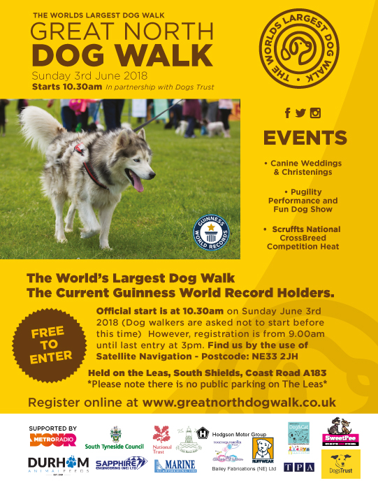 Great north dog walk poster